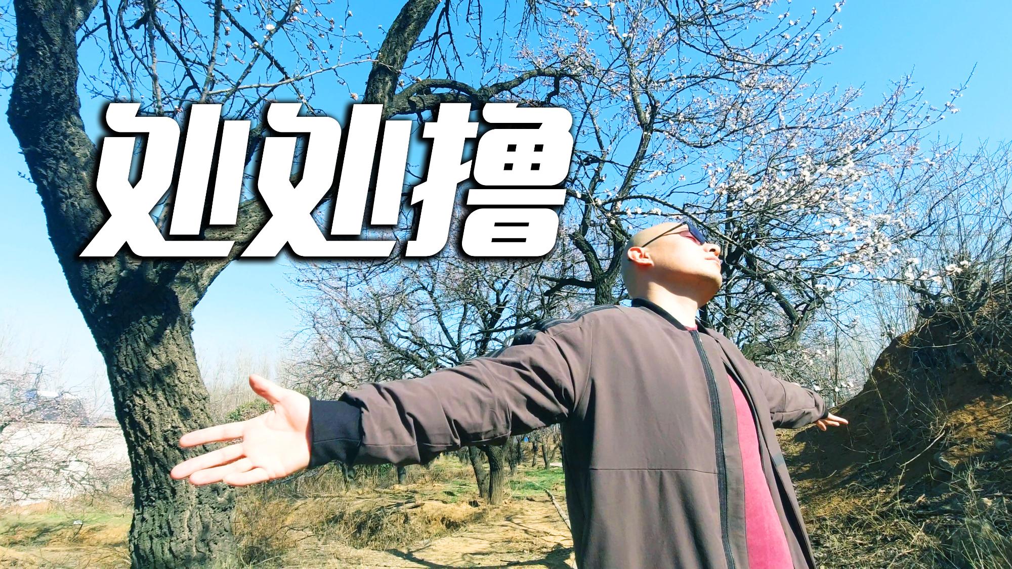 处  处  撸 【UP主基本功大赛】