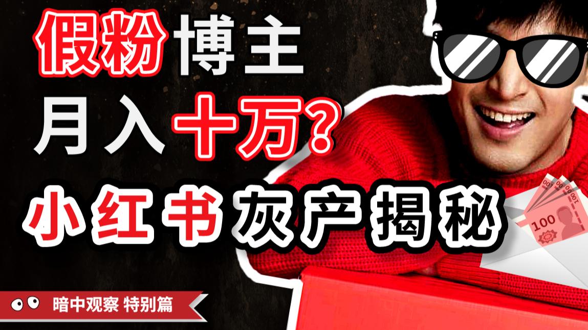 【春节特别篇02】卧底100个小红书群一年,深挖月入十万的假粉博主背后的灰产利益链 -IC实验室出品