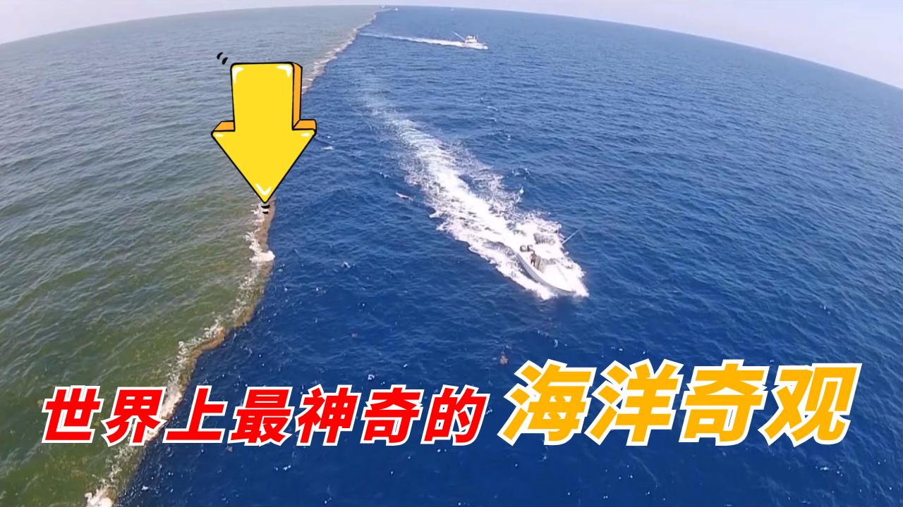 世界上最神奇的海洋奇观:两片海水紧密相连,却始终无法融合!