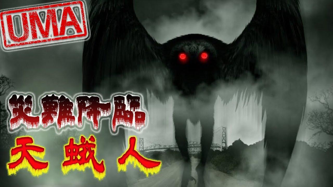 【UMA檔案】天蛾人- 未知凶兆,災難降臨!1967銀橋倒塌事件元凶