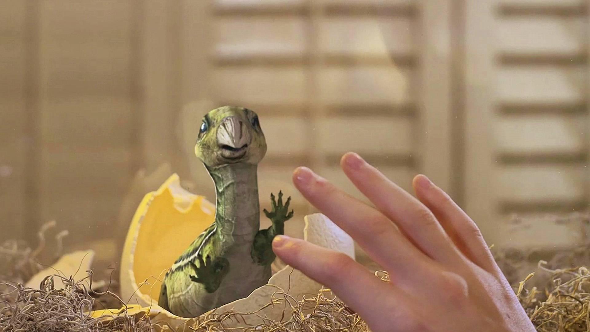小男孩孵出一只小恐龙,小恐龙将他当成了妈妈,一部奇幻恐龙电影