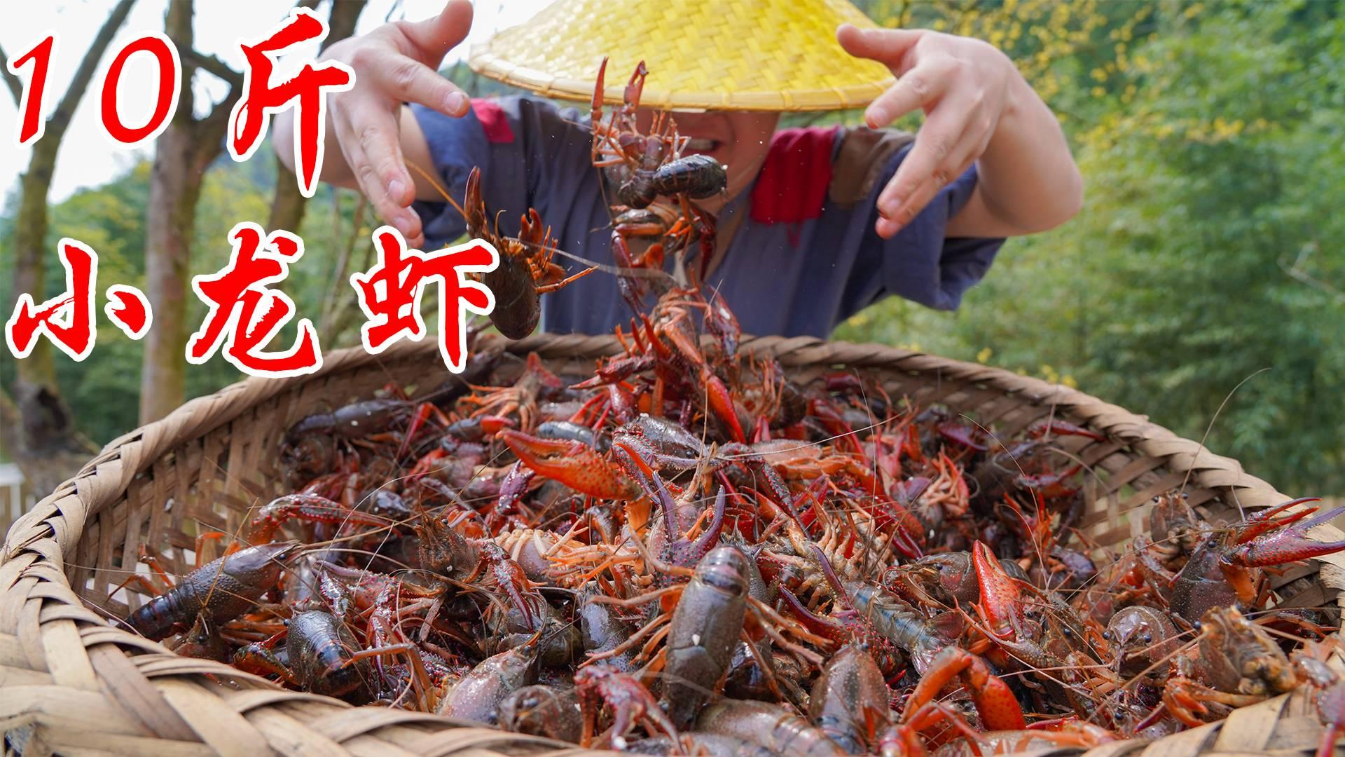 400元买10斤小龙虾,秘制一锅辣卤小龙虾,这下终于吃爽了
