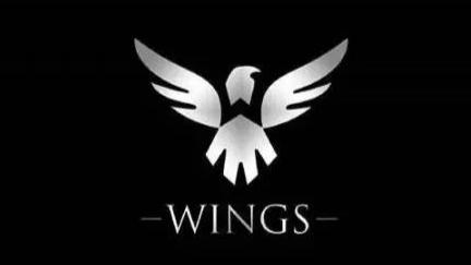 OB解说 Ti6 Wings 夺冠全纪录