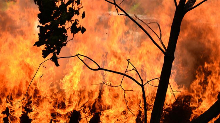 3.30木里火灾周年祭:西昌山火救援19人牺牲