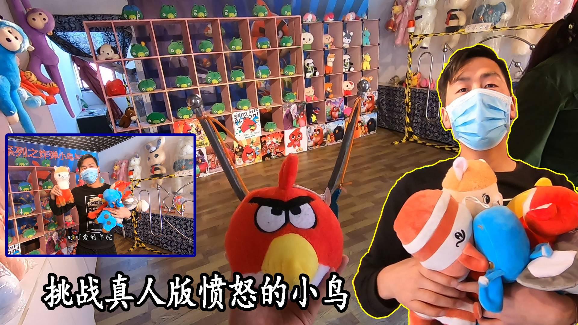 挑战真人版愤怒的小鸟,给老板上一课,玩得太过瘾还整一堆布娃娃