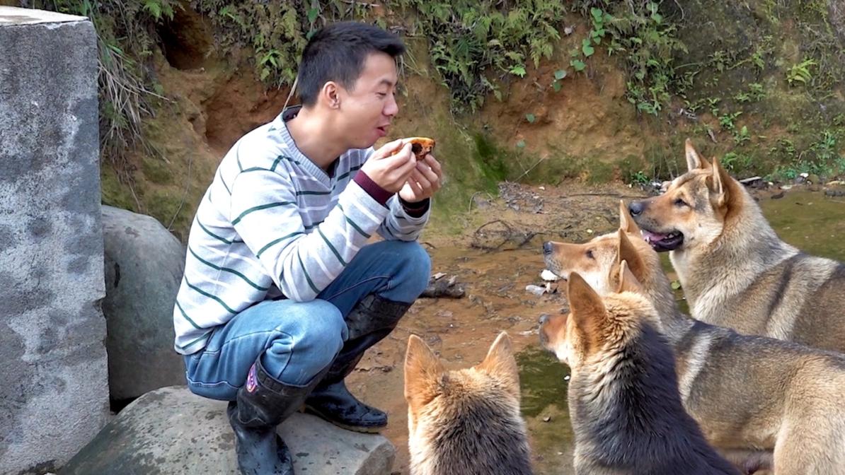 华农兄弟:看一下山上的野果,还有村里的果子,再挖1个竹笋来烤