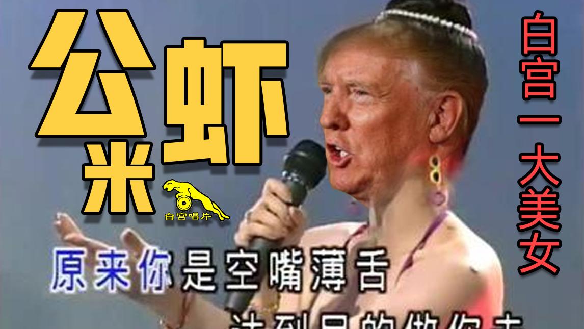 【川普】闽南名曲:公虾米