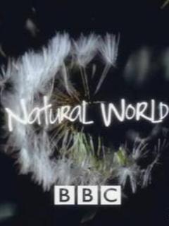 [纪录片][自然世界]