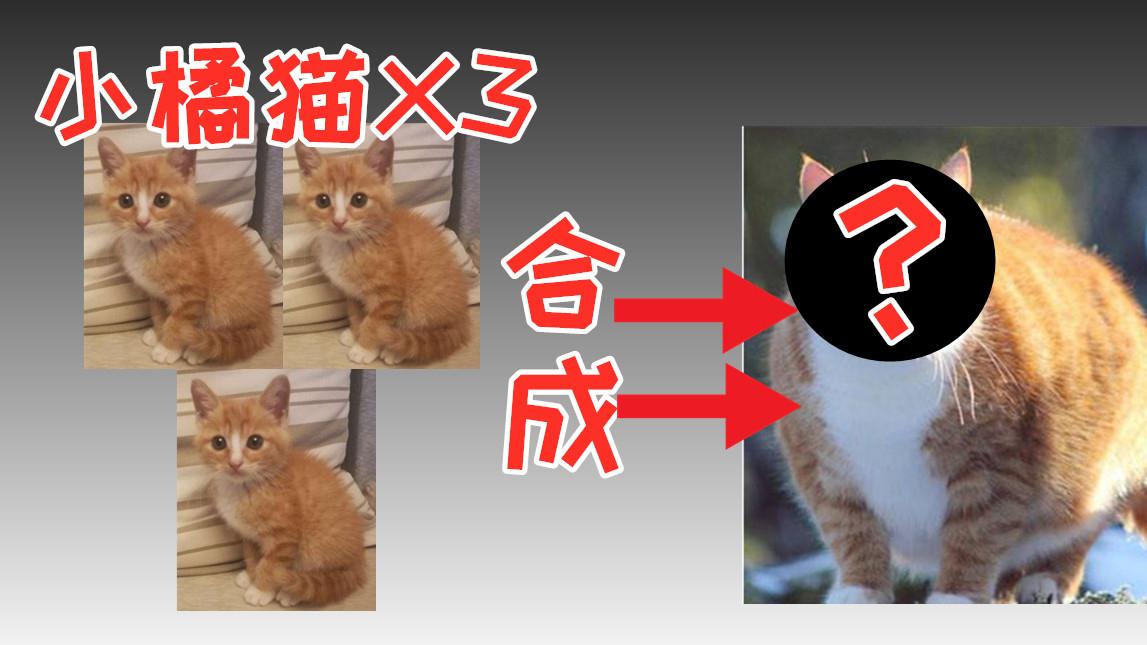 【猫神】玩腻了LOL自走旗来试试单机版PVE自走旗 传奇生物
