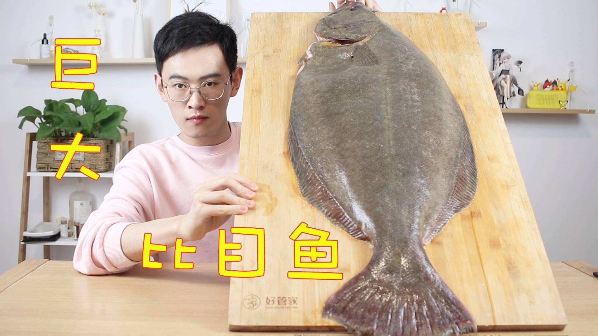 分解15斤的超大鸦片鱼,做成吃不起的样子