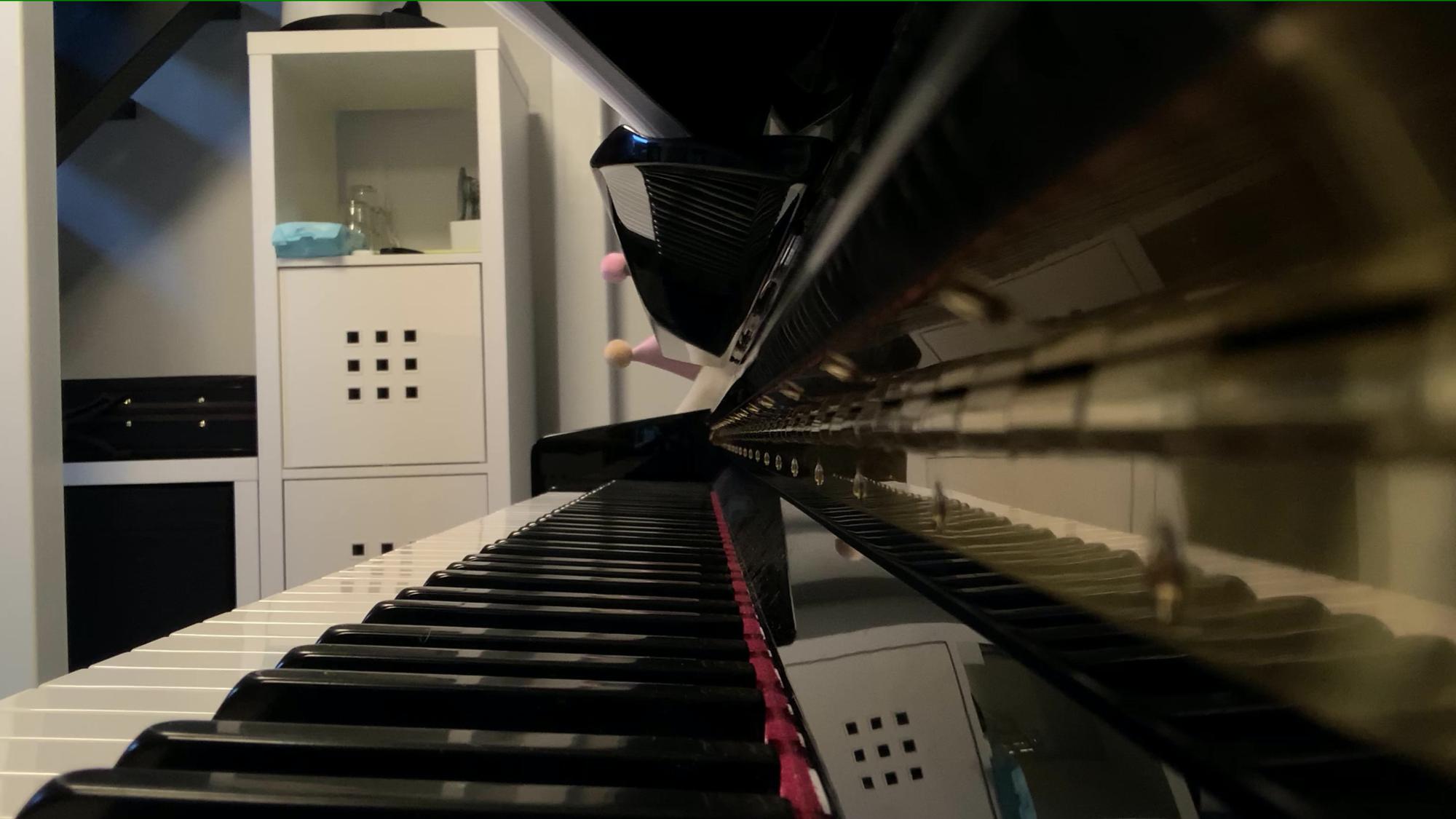 【废奥钢琴】莫扎特C大调钢琴奏鸣曲 K.545 Ⅲ Rondo.