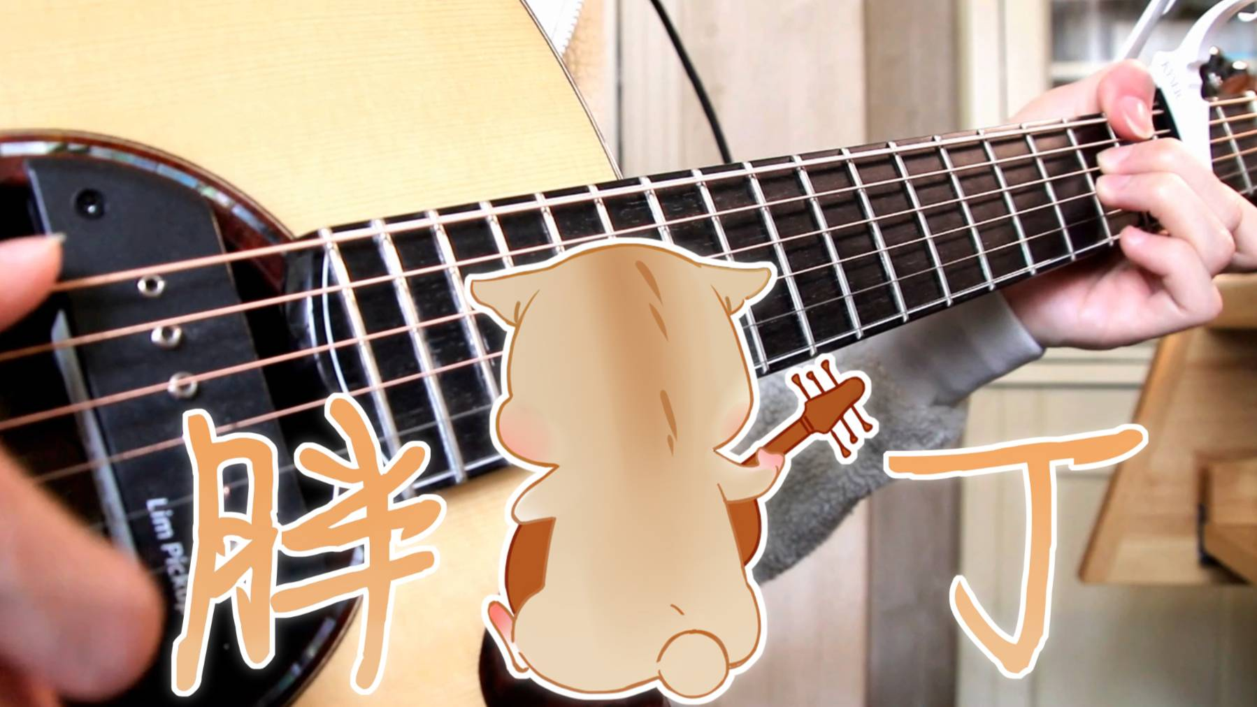 【你可听过如此惬意的吉他指弹】胖丁【原创曲】
