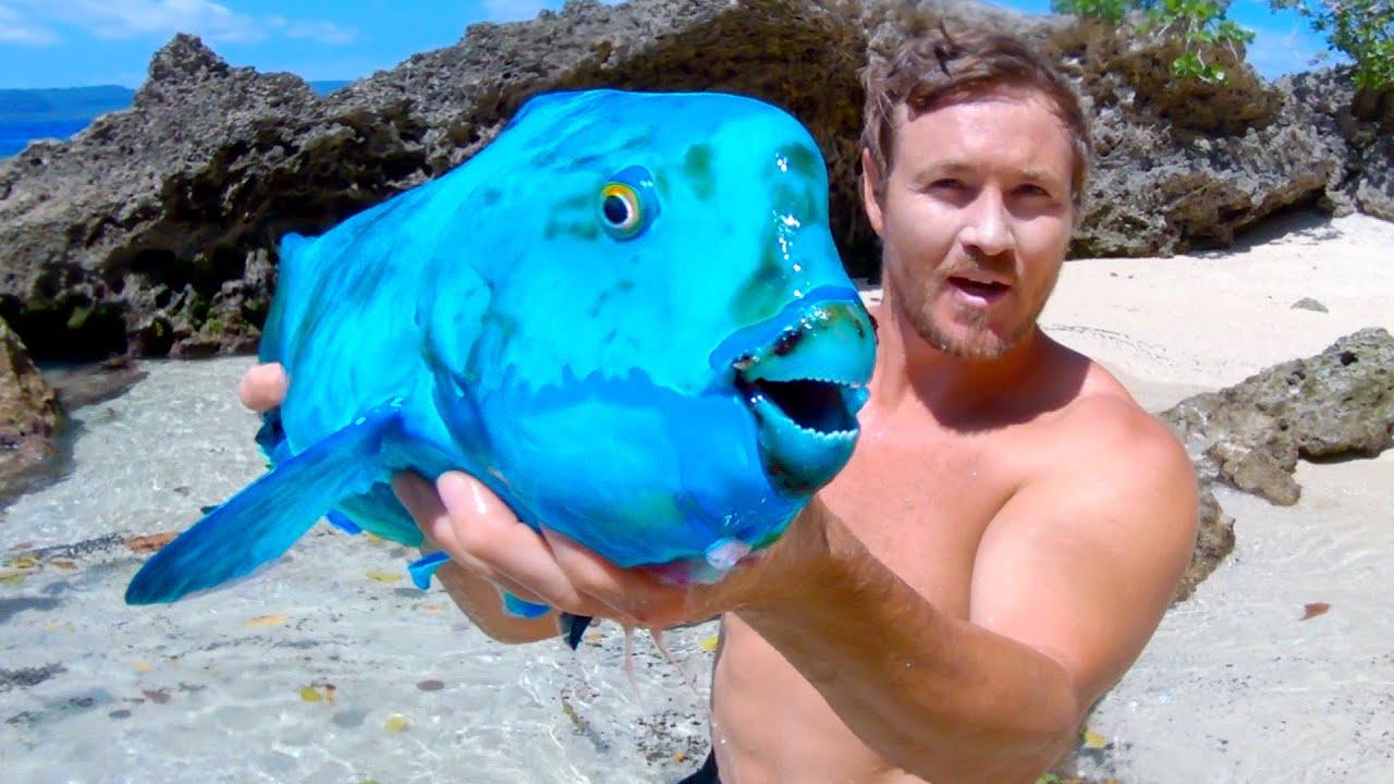 当地岛民在珊瑚礁洞穴中发现了这条鱼!