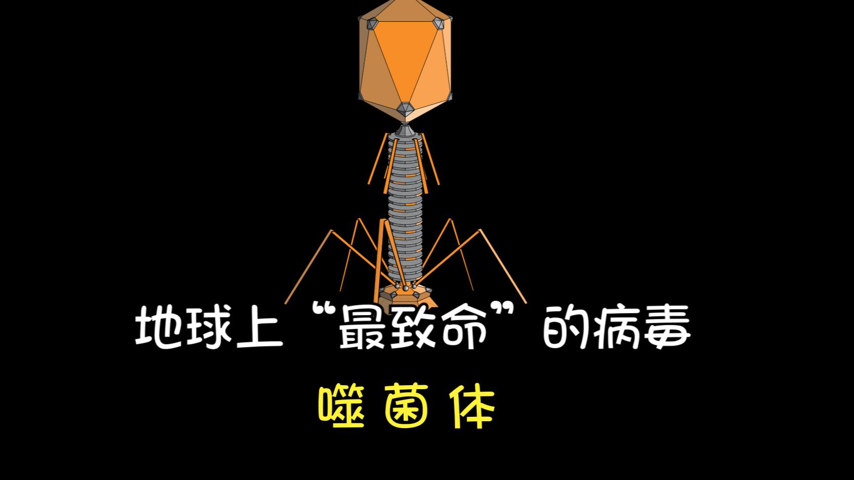 """地球上最""""致命""""的病毒,却能拯救咋们人类——噬菌体"""