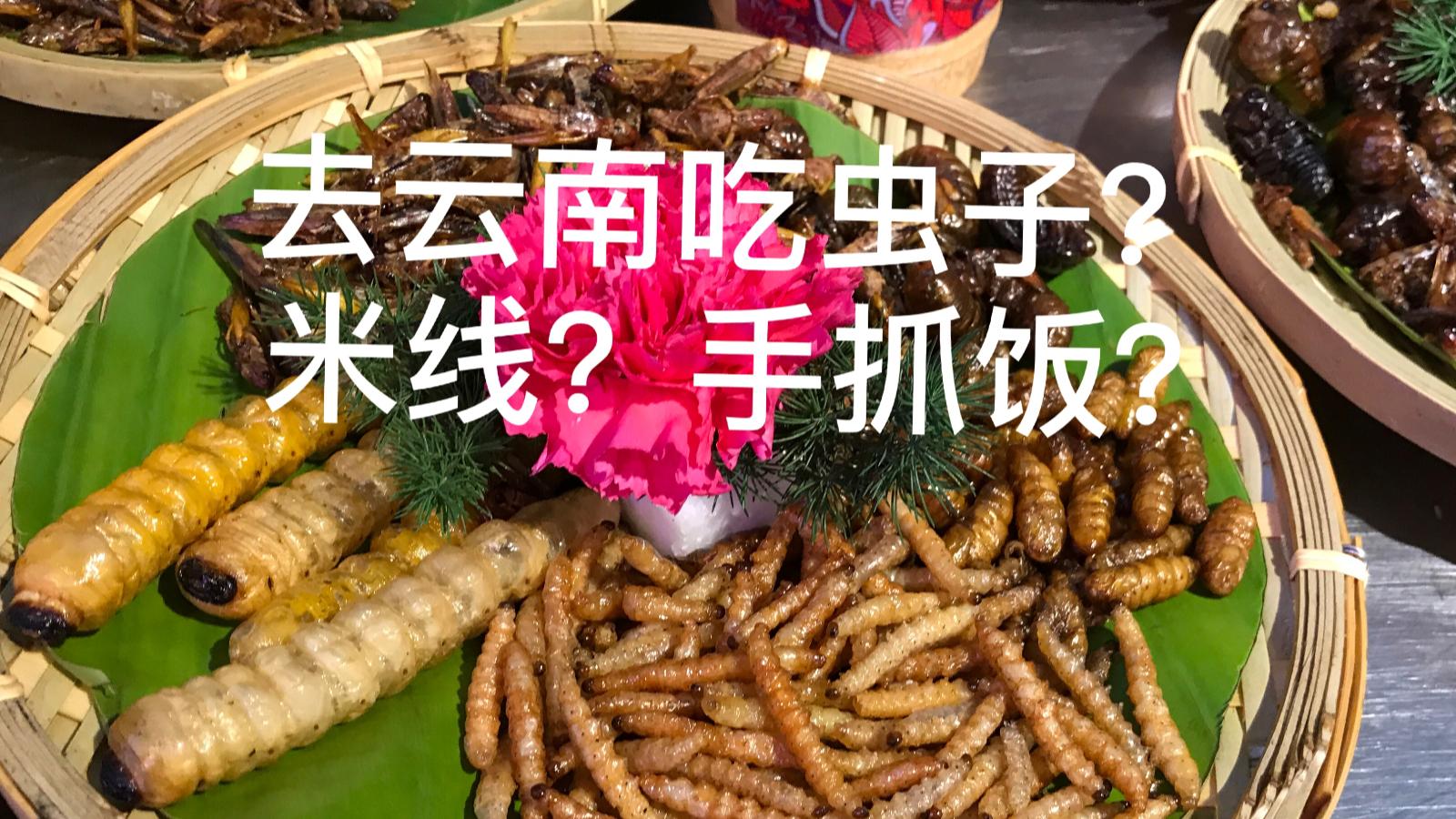 【阿咩】vlog08 出差去云南的日子 吃虫子?米线?手抓饭
