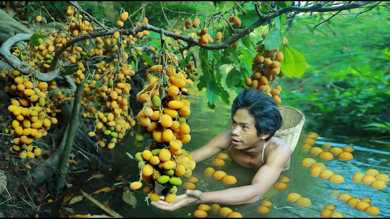 东南亚男子在河道发现了这种野果 ! 你们有吃过 ?