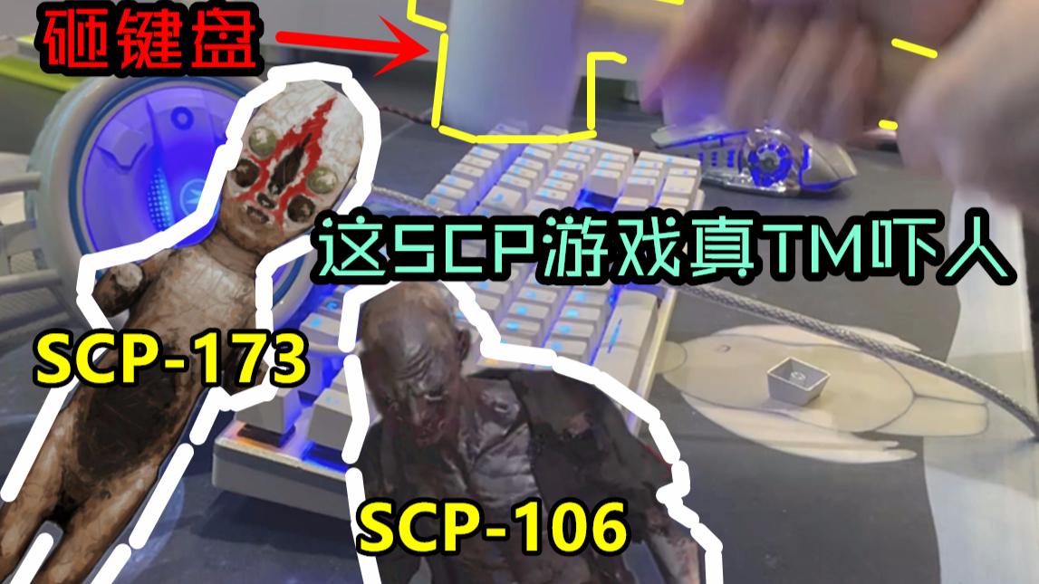 玩SCP恐怖游戏被虐,全程爆笑高能,主播最后键盘都砸了!