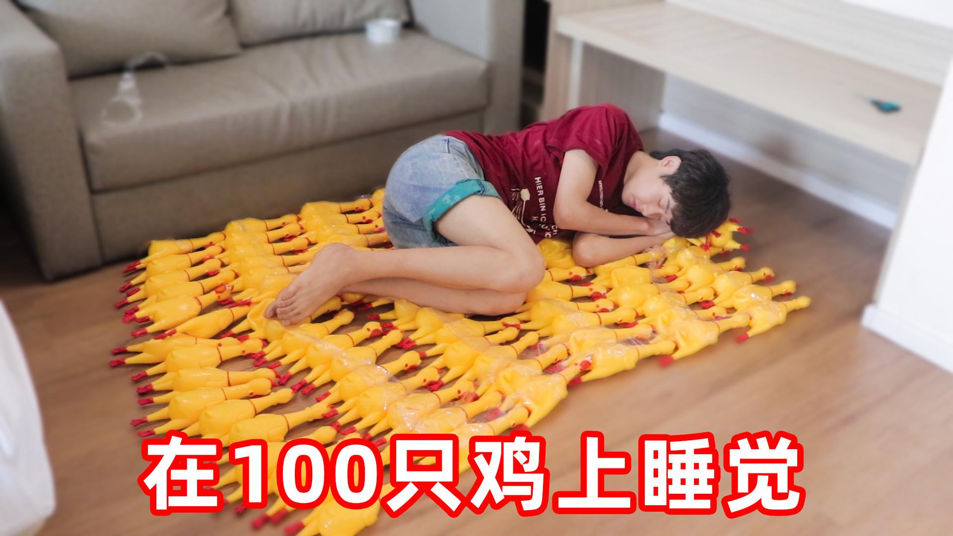 挑战在100只尖叫鸡上面睡觉!晚上邻居被吵到砸天花板