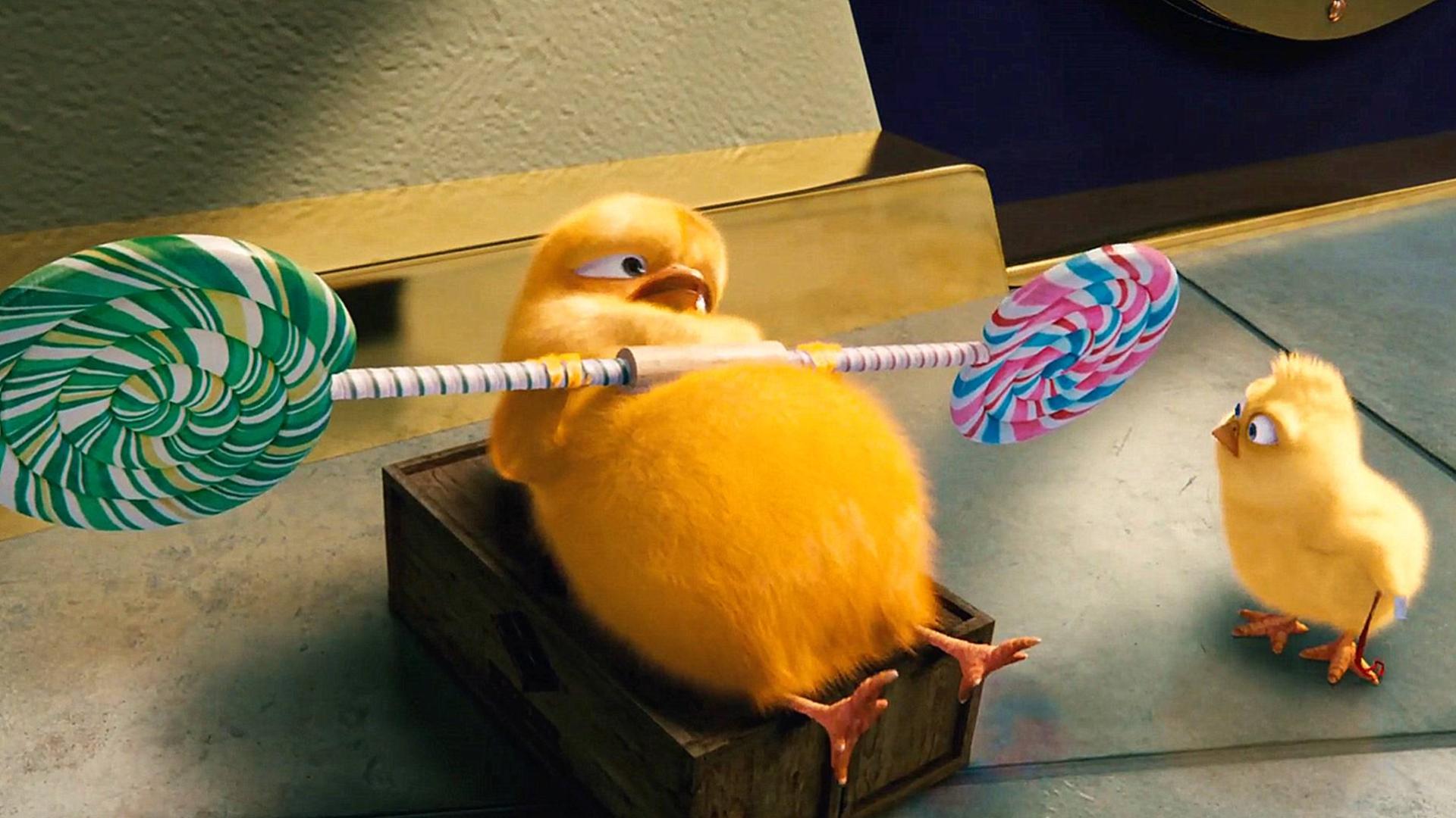 小鸡为了锻炼肌肉,开始了魔鬼健身计划,一部搞笑动物电影