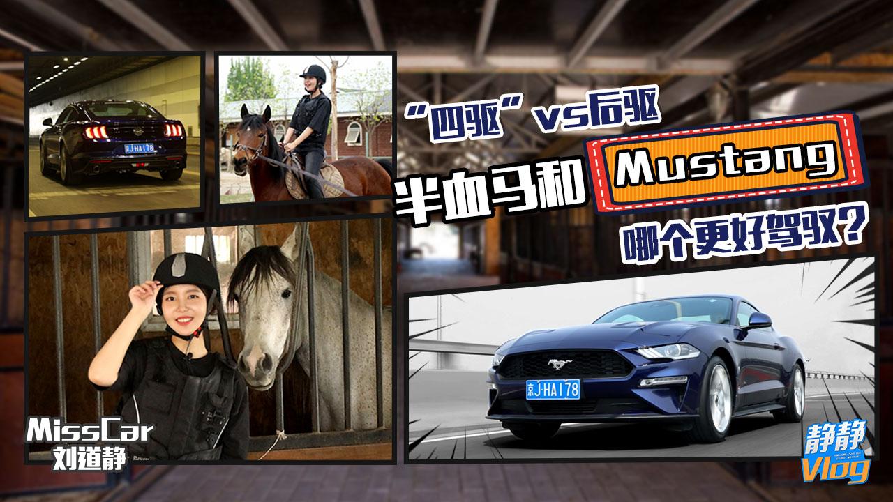 """""""四驱""""vs 后驱 半血马和Mustang哪个更好驾驭?"""