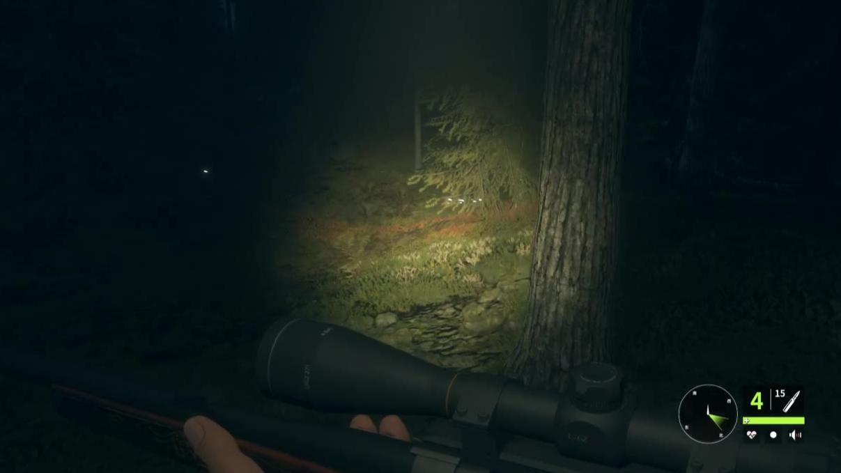 猎人荒野的呼唤首次夜间狩猎