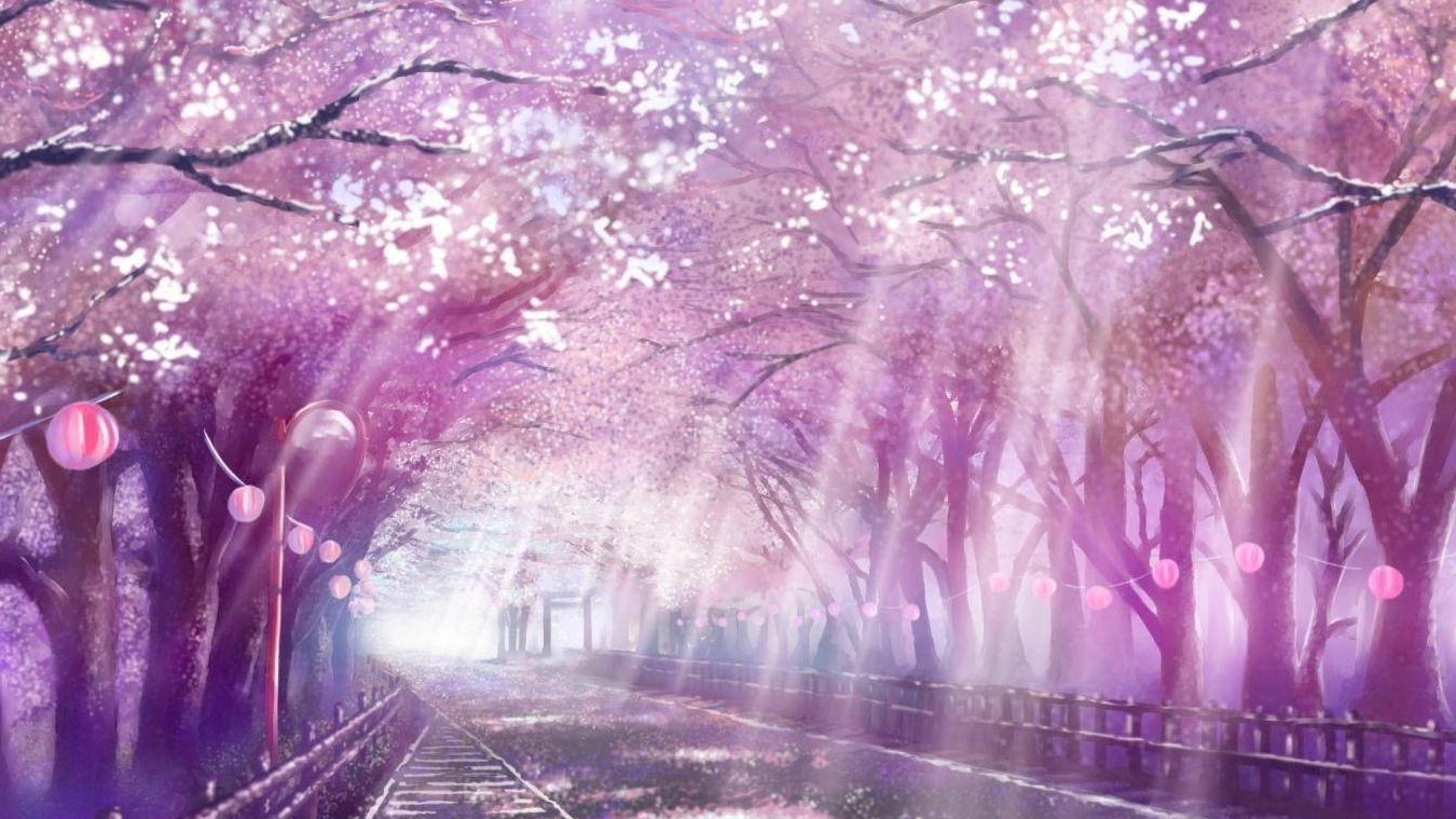 【无限单曲循环】唯美动漫风景,让樱花带你感受春日的爱