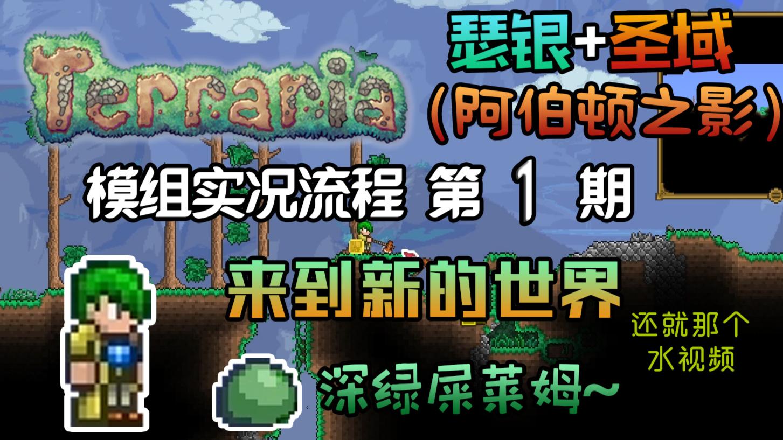 【丁菊长】再开新坑!【泰拉瑞亚 terraria】瑟银+圣域模组实况第1期