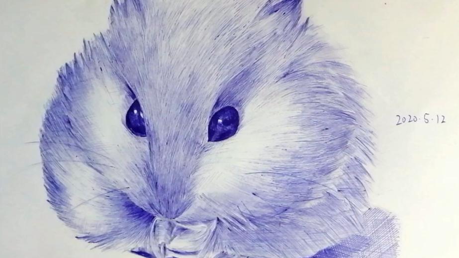 圆珠笔手绘:仓鼠