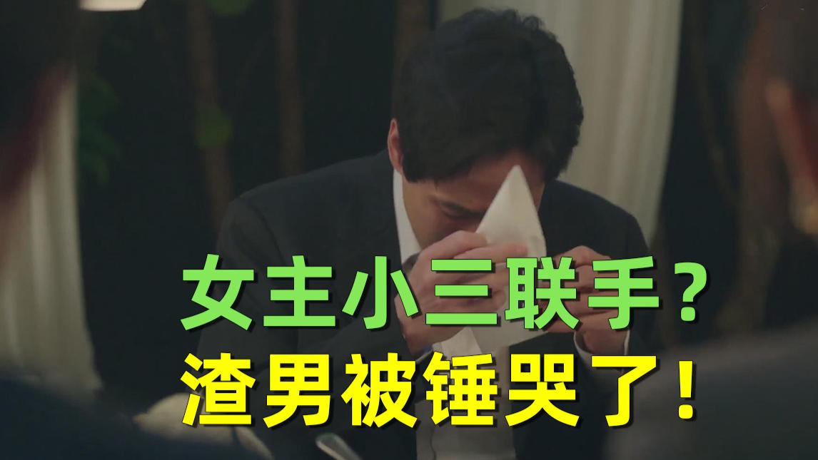 【刘哔】解说《夫妻的世界》大结局:女主小三联手?渣男净身出户!最后结局万万没想到!