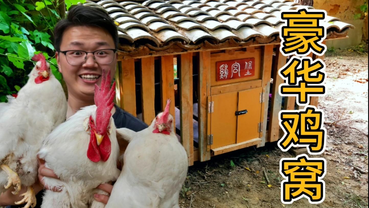 野居小院再添新丁,修个全村最豪华的鸡窝【AcFun13周年庆】