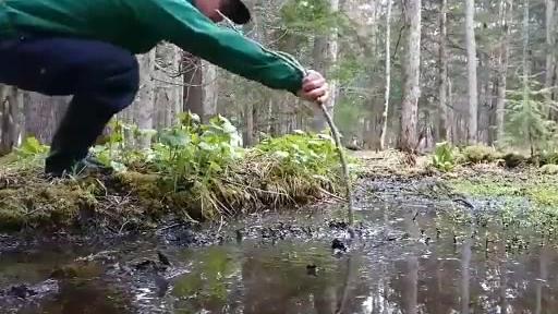 北海道的小孩从小会被告知:不要踩进水坑里。因为有时候看起来只是个小水坑,其实是深不见底的沼泽..