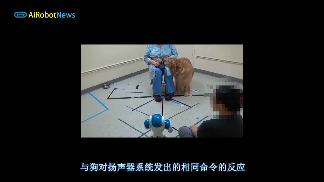狗狗会服从社交机器人发出的命令吗?