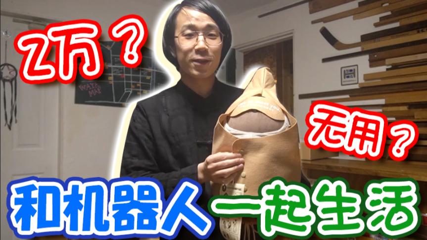 日本2万RMB没用的AI宠物是什么!?我代替你们吃亏一下