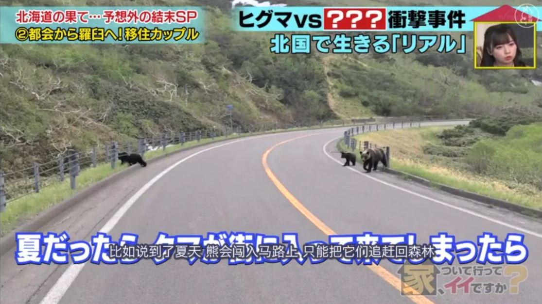 """【跟拍到你家/可以去你家吗】20.03.25住在日本最后的""""秘境""""知床半岛的情侣"""