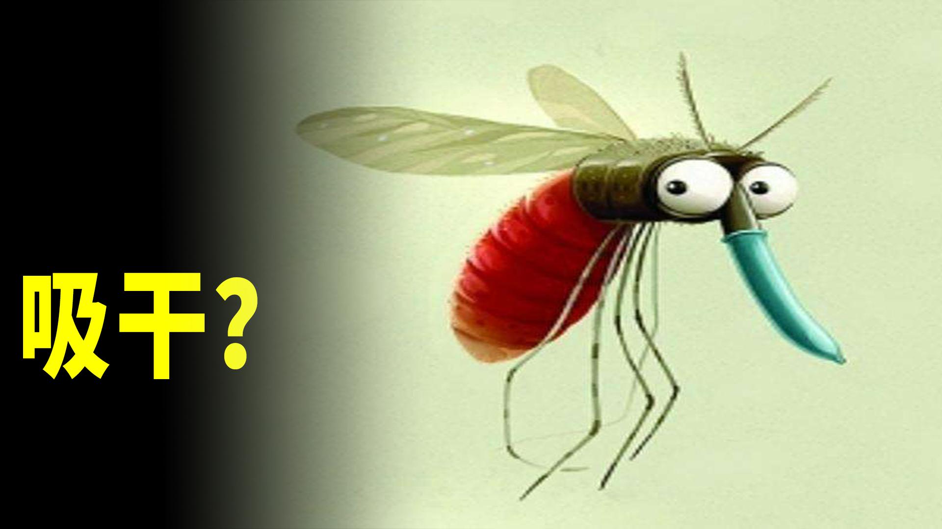 一群蚊子吸血,能把人吸干吗?