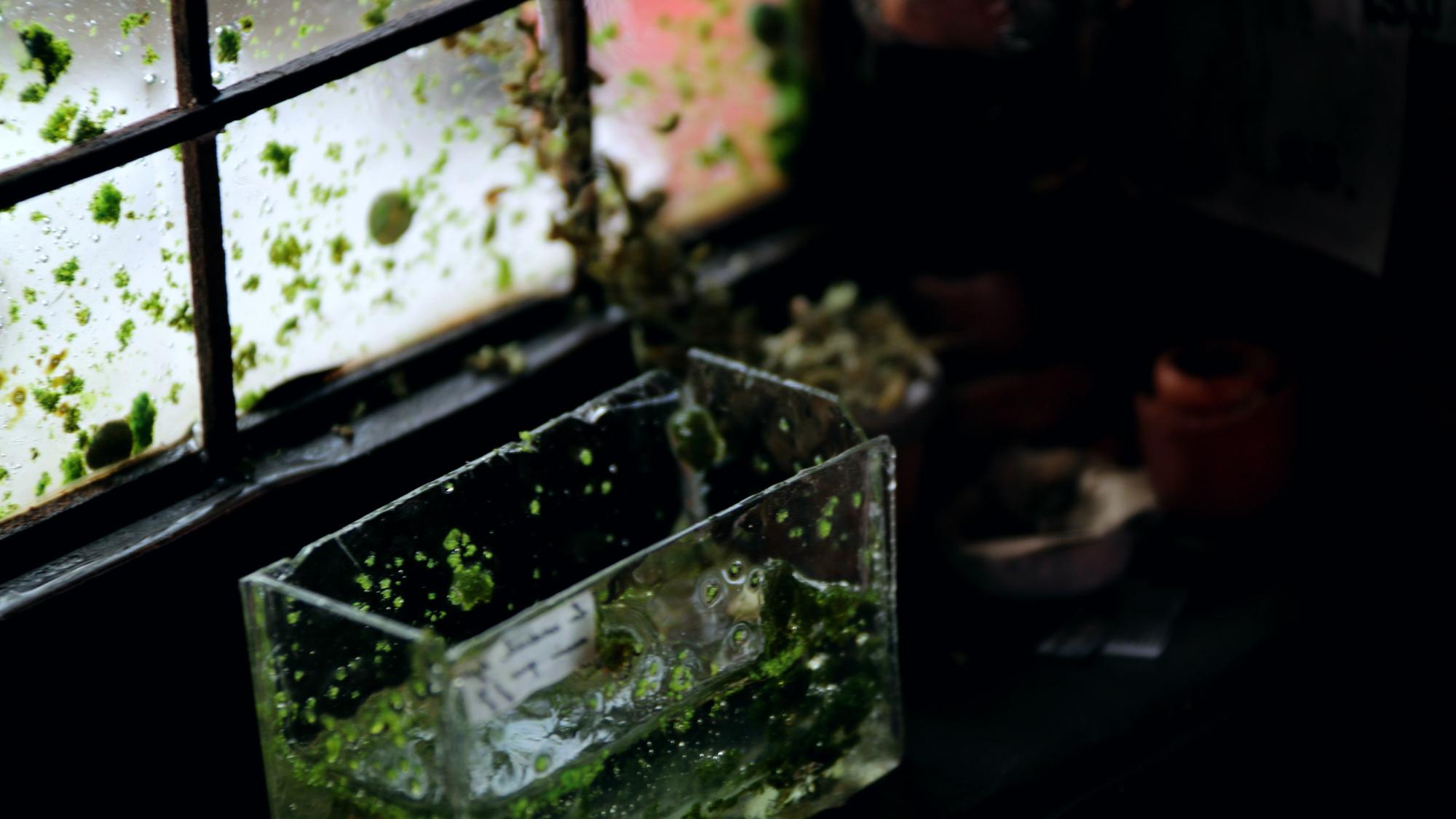 【微缩场景】论如何徒手制作一间隐匿于水中的微缩小屋!? (又名:水中屋《沉》