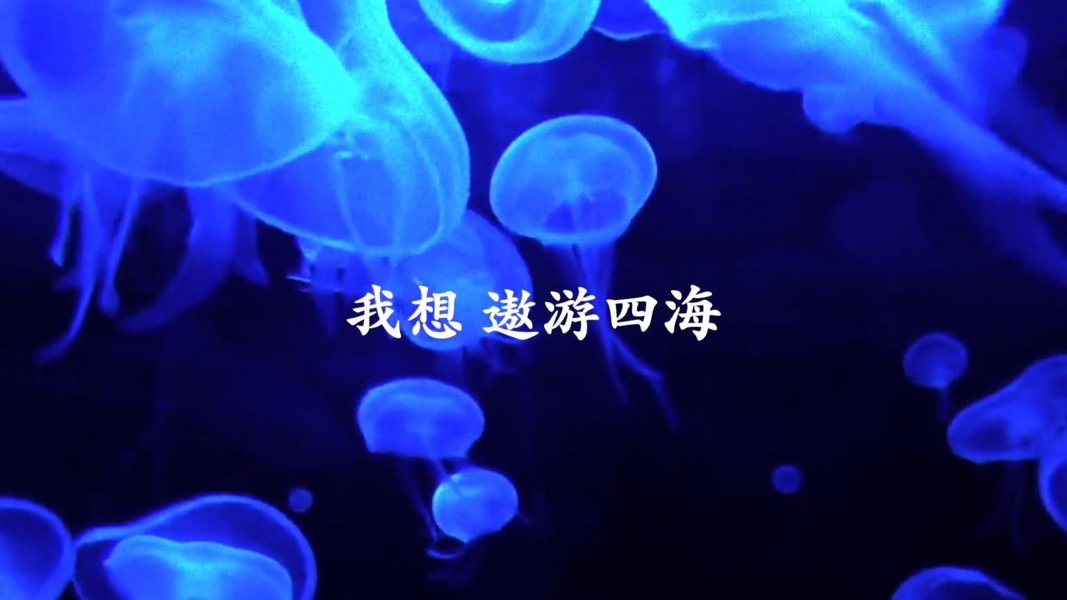 [自制MV] 法老-我想 part1