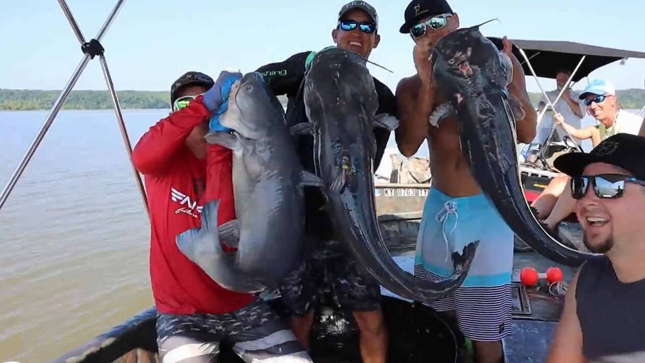 为何我们的河流没有这么大的鲶鱼 ? 看看国外男子捕获的鲶鱼如何吃法!