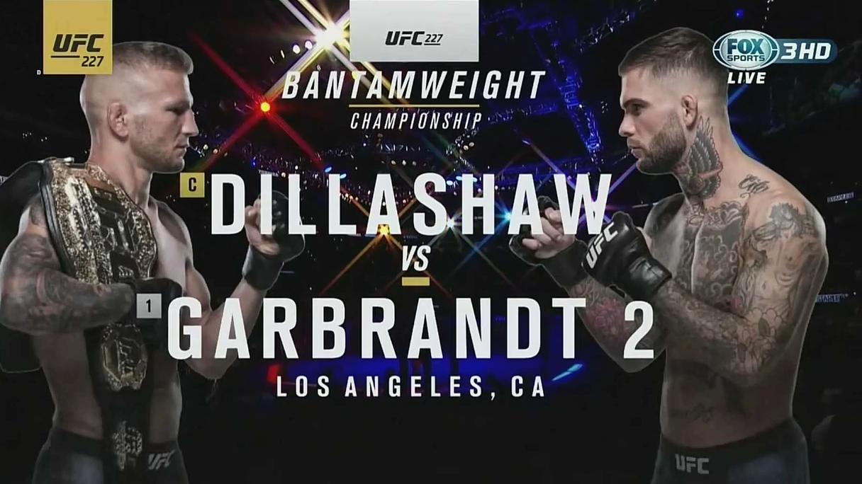 UFC227台湾解说  科迪 vs TJ迪拉肖 Ⅱ战