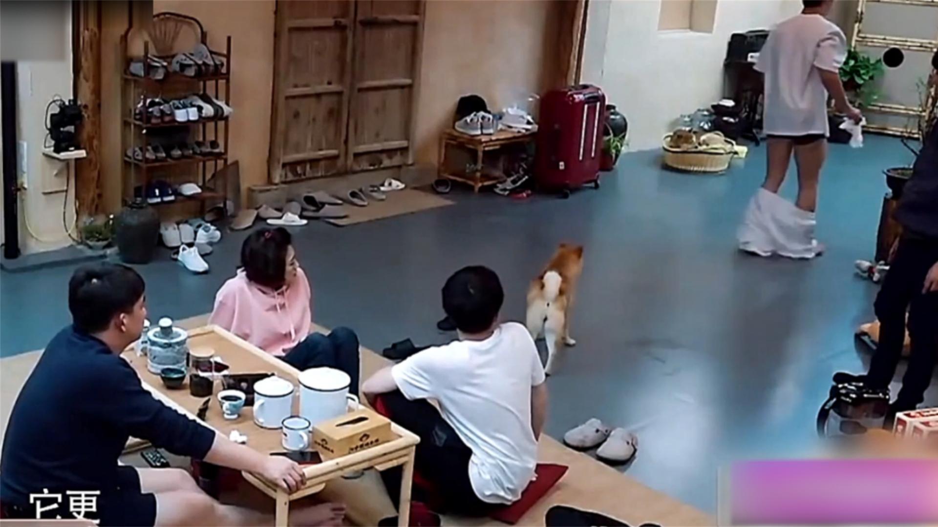 爆笑综艺名场面,黄磊:有女嘉宾在呢,刘宪华你干啥呢?笑喷!