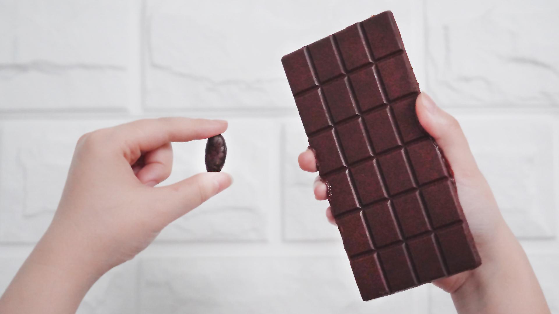 耗时5天!终于成功自制出巧克力!