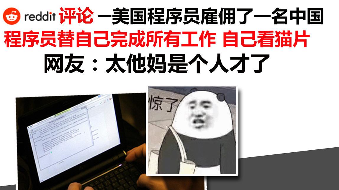 Reddit评论翻译:一位美国程序员雇佣了一名中国程序员替自己完成所有工作 自己看猫片