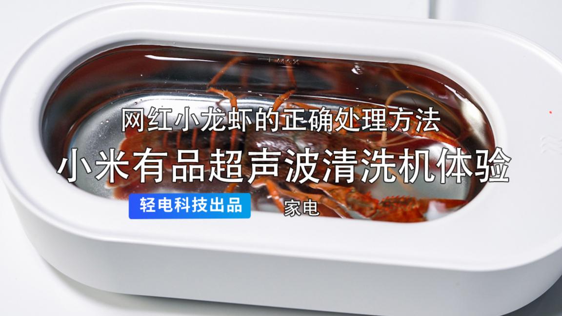 用超声波清洗机给小龙虾洗澡是一种什么样的体验?