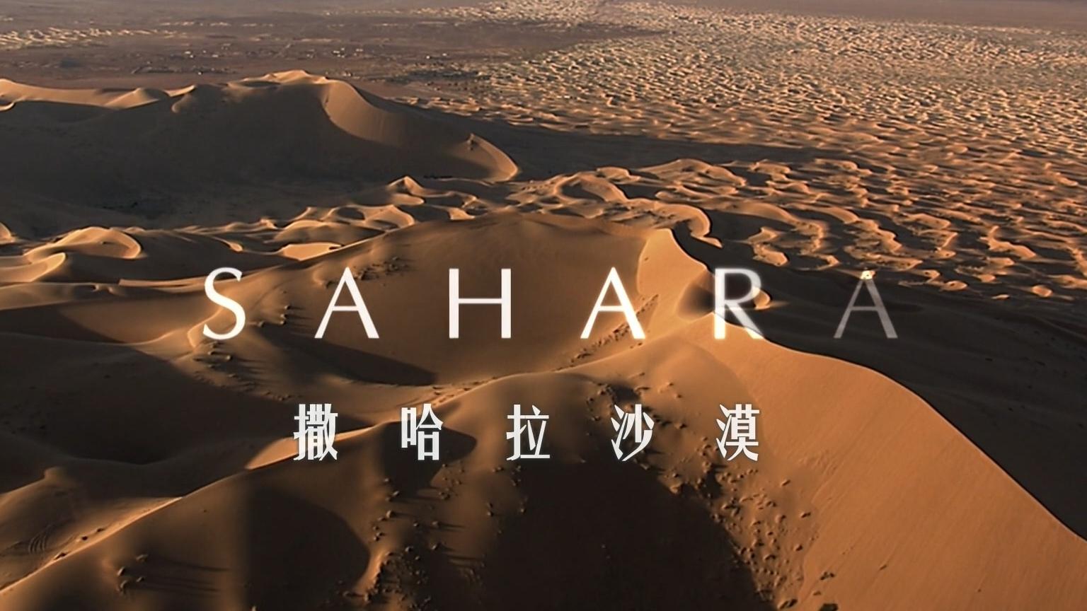 【纪录片】非洲 撒哈拉沙漠【双语特效字幕】【纪录片之家爱自然】