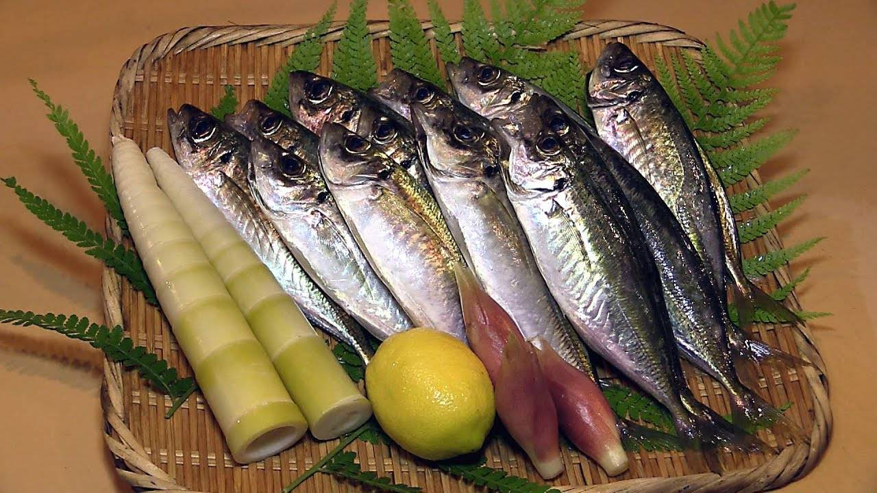 吃鱼还是日本人厉害,这种小鲭鱼也能做成超精致的刺身!
