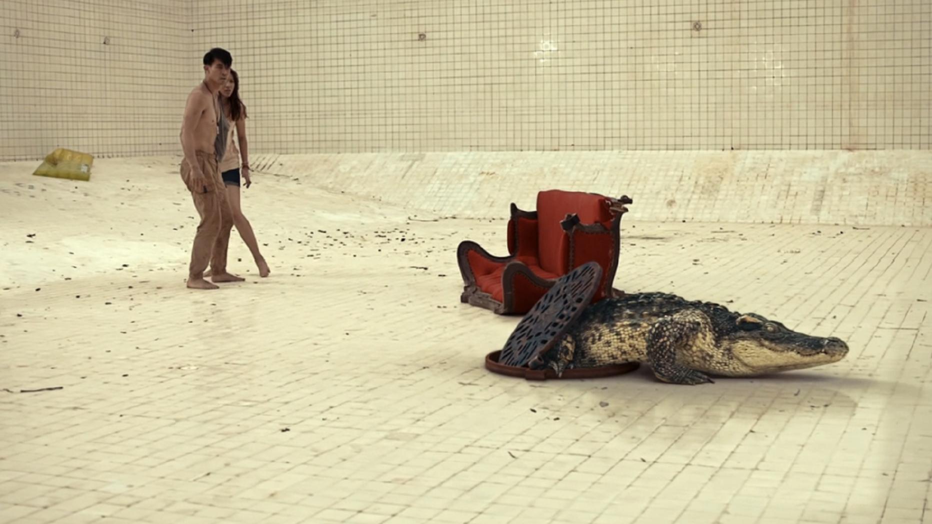 男女被困6米深的泳池,里面的水被抽空后,发现还有一条大鳄鱼