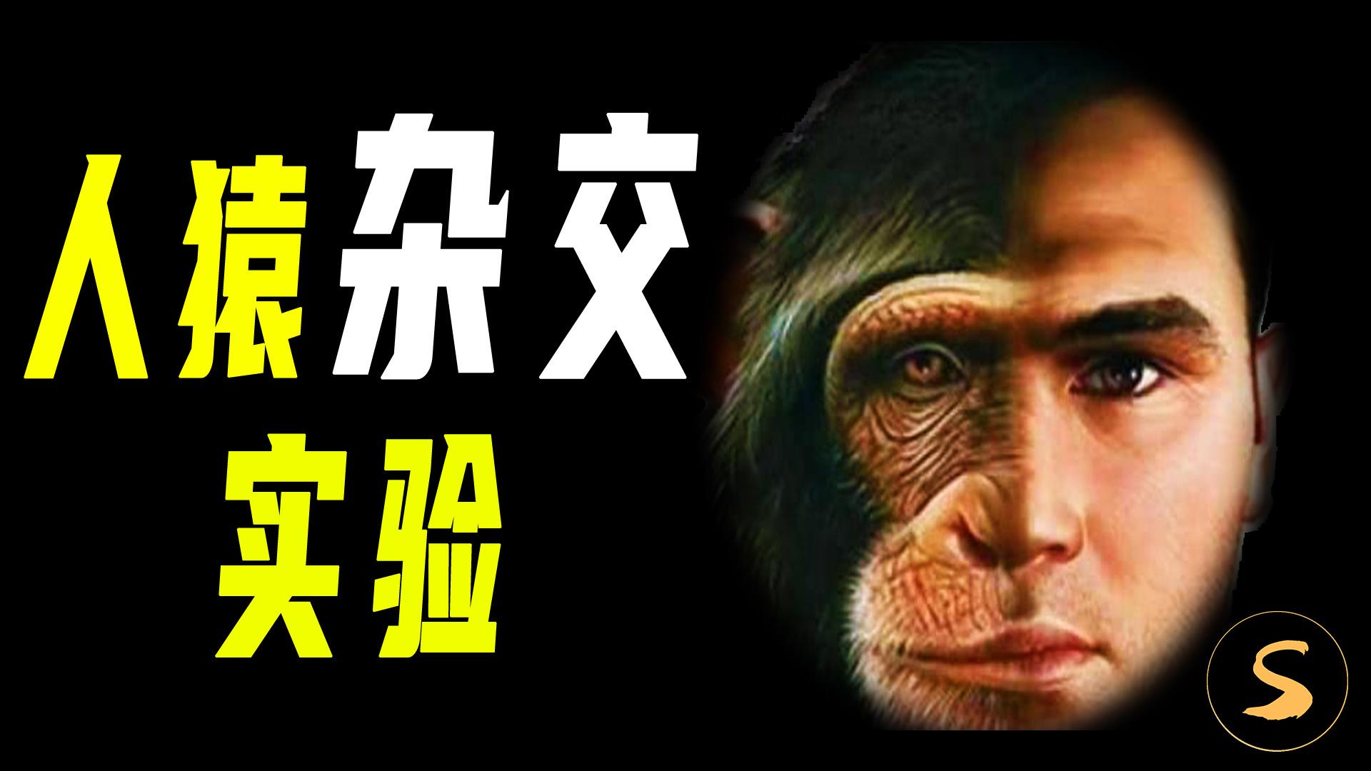 人类和猩猩杂交会出现什么神奇物种?前苏联曾实施的反伦理实验