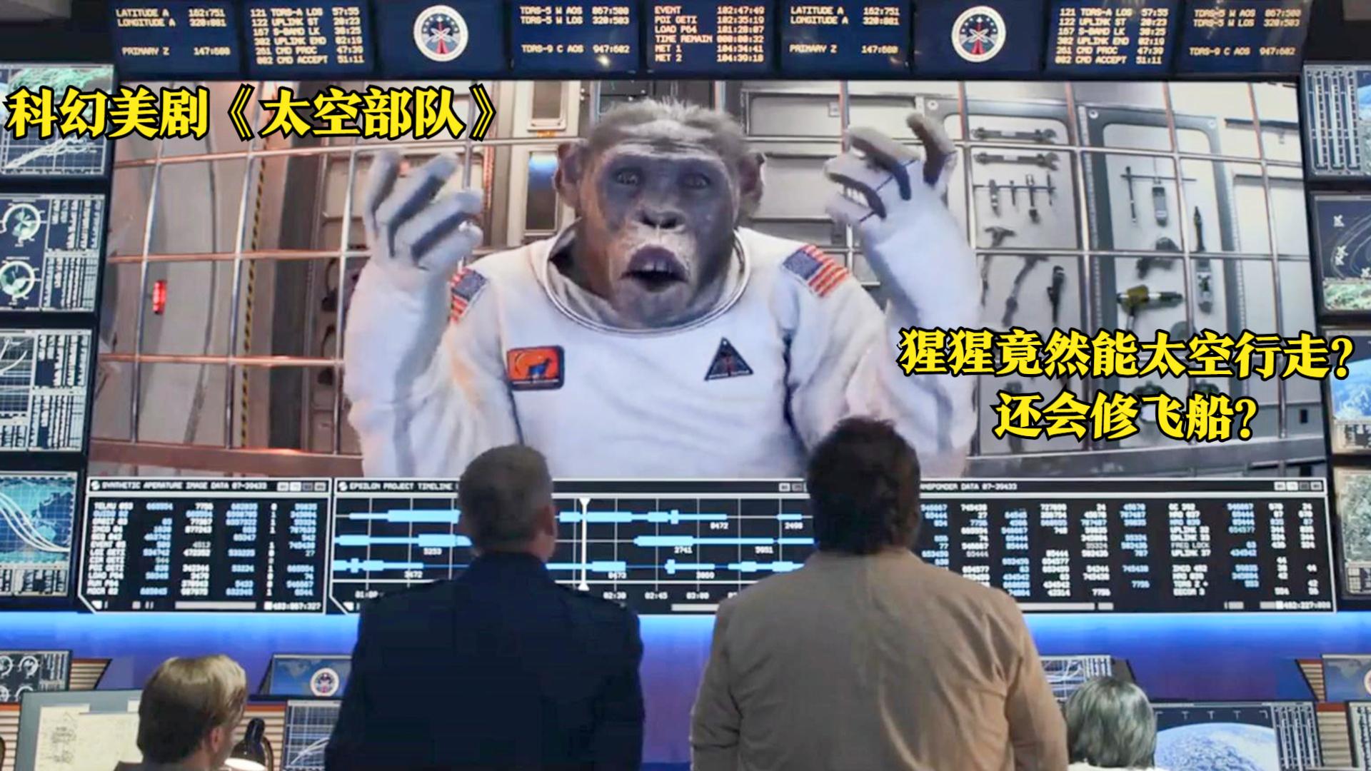飞船出现故障,美国派猩猩去修理,猩猩一看到中国飞船竟直接投降