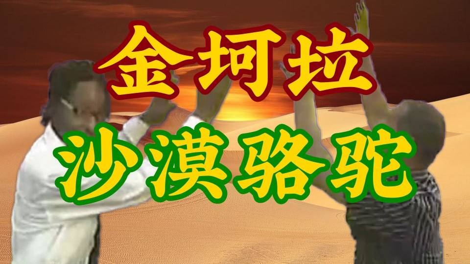 【金坷垃】沙漠骆驼