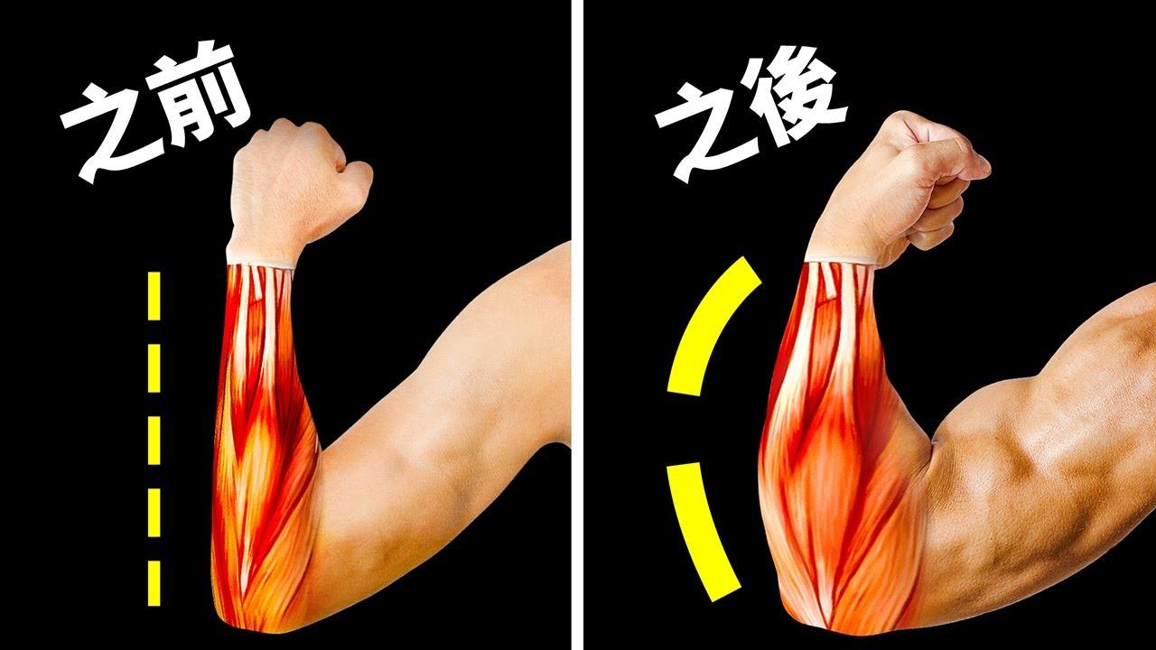 14项对你前臂强化很有效果的健身训练